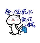 ねこねこナンバーワン【毎日使うパック】(個別スタンプ:36)