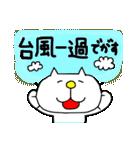みちのくねこ 春夏秋冬「秋」(個別スタンプ:8)