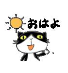 はちわれ靴下猫★日常会話★(個別スタンプ:09)