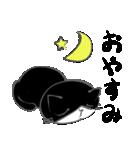 はちわれ靴下猫★日常会話★(個別スタンプ:10)