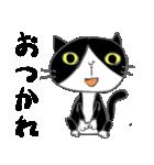 はちわれ靴下猫★日常会話★(個別スタンプ:11)