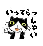 はちわれ靴下猫★日常会話★(個別スタンプ:14)