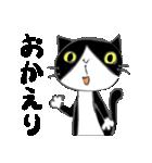 はちわれ靴下猫★日常会話★(個別スタンプ:15)