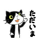 はちわれ靴下猫★日常会話★(個別スタンプ:16)