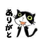 はちわれ靴下猫★日常会話★(個別スタンプ:18)
