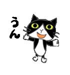 はちわれ靴下猫★日常会話★(個別スタンプ:20)