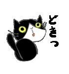 はちわれ靴下猫★日常会話★(個別スタンプ:30)