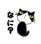 はちわれ靴下猫★日常会話★(個別スタンプ:31)