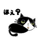 はちわれ靴下猫★日常会話★(個別スタンプ:33)