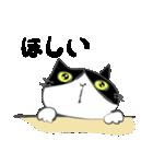 はちわれ靴下猫★日常会話★(個別スタンプ:34)