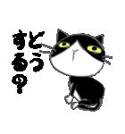 はちわれ靴下猫★日常会話★(個別スタンプ:35)
