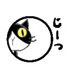 はちわれ靴下猫★日常会話★(個別スタンプ:36)