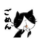 はちわれ靴下猫★日常会話★(個別スタンプ:37)