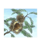 デジタルペンで描く日本の四季の風景の墨絵(個別スタンプ:34)