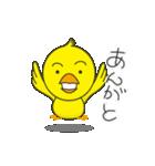 ひよこ1号(個別スタンプ:05)