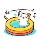 だいすきネコちゃん5(個別スタンプ:07)