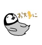 あかちゃんペンギンの使える日常会話(個別スタンプ:31)