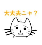 【猫言葉】たまですニャ(個別スタンプ:04)