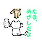【猫言葉】たまですニャ(個別スタンプ:13)