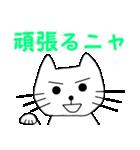【猫言葉】たまですニャ(個別スタンプ:17)