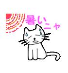 【猫言葉】たまですニャ(個別スタンプ:19)