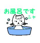 【猫言葉】たまですニャ(個別スタンプ:37)