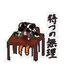 濱松恵とテキーラの生活(個別スタンプ:02)