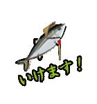 応援ぶり(香川県出身鰤18弾)(個別スタンプ:19)