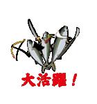 応援ぶり(香川県出身鰤18弾)(個別スタンプ:28)