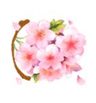 お「はな」し・花言葉と季節(個別スタンプ:17)