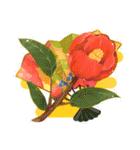 お「はな」し・花言葉と季節(個別スタンプ:24)