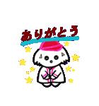 広島★優勝を応援する白犬(個別スタンプ:02)