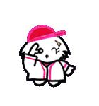 広島★優勝を応援する白犬(個別スタンプ:12)