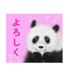 パンダ、大好き。(個別スタンプ:7)