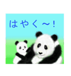 パンダ、大好き。(個別スタンプ:19)