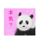 パンダ、大好き。(個別スタンプ:20)