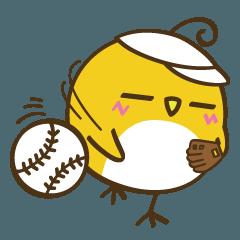 野球のシーン満載。コットリーノ2