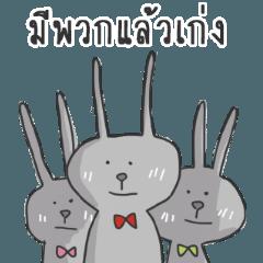 My gray rabbit