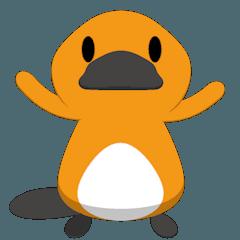 Cool platypus