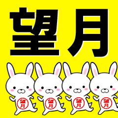 超★望月(もちづき・もちずき)なウサギ