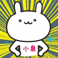 小泉(こいずみ)さんが使うウサギ