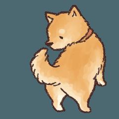 動く柴犬の日常スタンプ