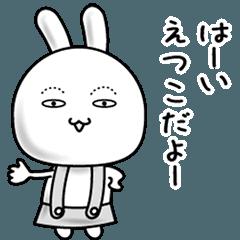 【えつこ】動くすっぴんウサギ