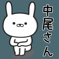 中尾(なかお)さんが使うウサギ