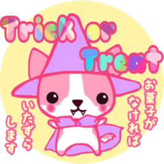 【ピンクのチワワ】