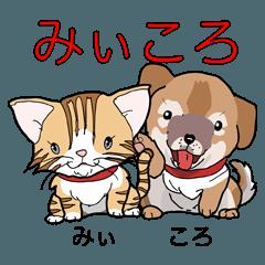 [LINEスタンプ] みぃころ その1 (1)