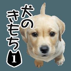 犬のきもち 1
