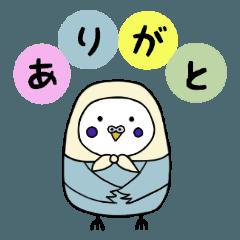 ほっかむり鳥(いんこ編)