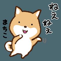 [LINEスタンプ] 柴犬 まちこ