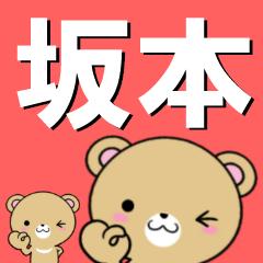 超★坂本(さかもと・サカモト)なクマ